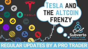 Tesla and the Altcoin Frenzy